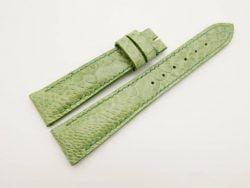 19mm/16mm Green Genuine OSTRICH Skin Leather Watch Strap #WT2984